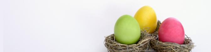 Colourful-eggs